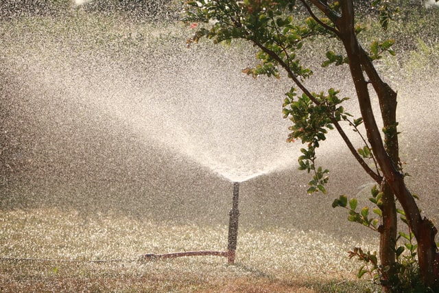 Sprinkleranlage im Garten zur Bewässerung