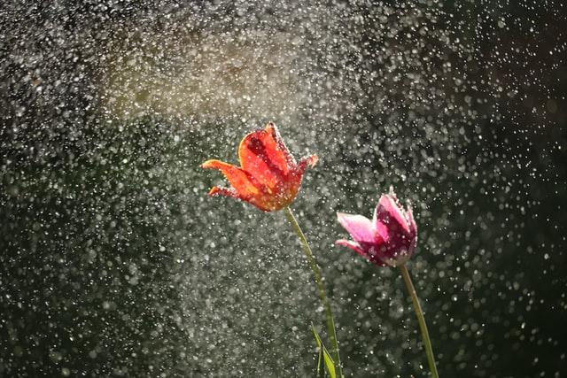 Entwässerung vom Regen